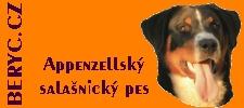 Stránky Appenzellského salašnického psa, jménem Beryc Dakam.